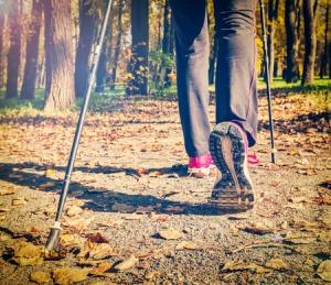 40445376 - nordic walking