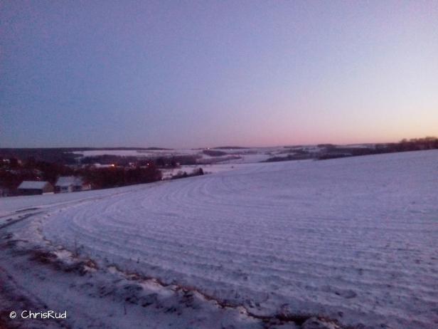 winter (7)