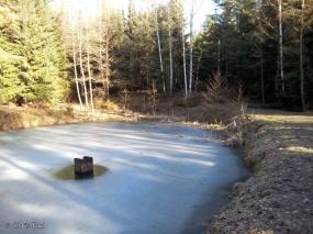 noch gefroren